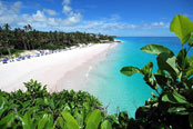 The best beach in the world - Crane Beach in Barbados