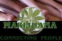 marihuana connecting people
