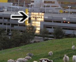 Yahoo Goats