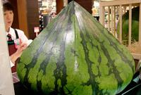 Pyramid shaped watermalon