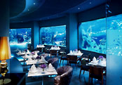 five giant aquariums decorate the hotel's restaurants and spa