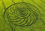 Crop circles Roundway Wiltshire